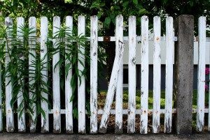 Broken Picket Fence Resize
